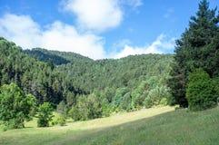Landschap van de bergen van de Pyreneeën op de de zomer zonnige dag Stock Afbeelding