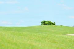 Landschap van de Cursus van het Golf Stock Fotografie