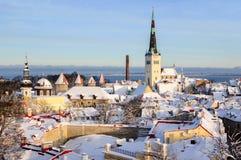 Landschap van de de stads het panoramische winter van Tallinn Stock Foto's