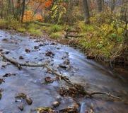 Landschap 3 van de herfst Stock Afbeelding