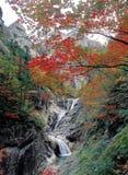 Landschap van de Herfst Stock Foto