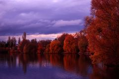 Landschap van de herfstbomen boven het meer stock afbeeldingen