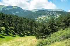 Landschap van de het bos en bergen van de Pyreneeën Royalty-vrije Stock Afbeelding