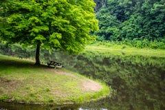 Landschap van de het Park het Toneelrivier van de Staat van Ohio royalty-vrije stock afbeelding