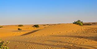Landschap van de Indische Woestijn van Thar met exemplaarruimte Stock Afbeeldingen