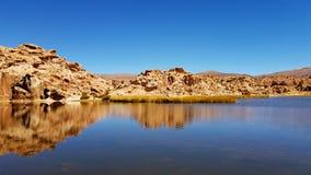 Landschap van de Laguna Negra Zwarte Lagune, Altiplano, Bolivië stock afbeeldingen