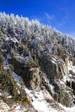 Landschap van de Reus Stock Foto's