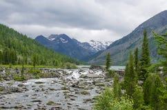 landschap van de rivier die op stenen onder bergen en het hout lopen Stock Afbeeldingen