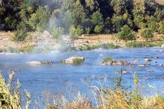 Landschap van de rivier met stenen en vallei met bomen Royalty-vrije Stock Fotografie