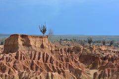 Landschap van de Tatacoa-woestijn, in Neiva, Colombia stock foto's