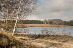 Landschap van de vloed van de rivier in de vroege lente Stock Foto