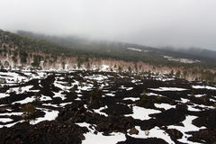 Landschap van de vulkaan van Etna, met het hout Royalty-vrije Stock Foto's