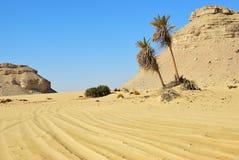 Landschap van de Westelijke woestijn de Sahara, Egypte royalty-vrije stock afbeelding