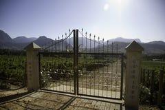 Landschap van de wijnmakerijen royalty-vrije stock foto's
