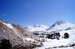 Landschap van de winter bij de bergbovenkant Stock Foto