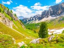 Landschap van Dolomiet met groene weiden, blauwe hemel, witte wolken en rotsachtige bergen Royalty-vrije Stock Foto