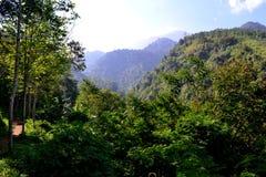 Landschap van een heuvel in de berg royalty-vrije stock foto's