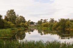 Landschap van een kalm pond met groen rond bos Royalty-vrije Stock Foto's