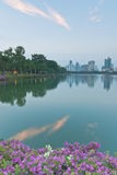 Landschap van een park en cityscape van Bangkok in de avond Stock Foto