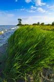 Landschap van eiland Usedom Royalty-vrije Stock Afbeeldingen