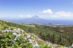 Landschap van Faial, de Azoren royalty-vrije stock afbeelding