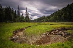 Landschap van Foldsjoen-meer dichtbij Hommelvik Boreaal meer, bossen royalty-vrije stock afbeeldingen