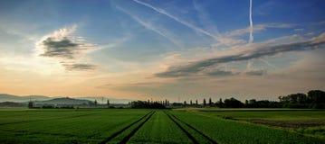 Landschap van gebieden en weiden bij zonsopgang Stock Afbeelding