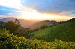 Landschap van gouden berg Royalty-vrije Stock Afbeeldingen