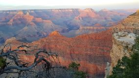 Landschap van Grand Canyon, Arizona Royalty-vrije Stock Afbeelding