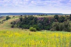 Landschap van grasrijke gele vallei, heuvels met bomen en bewolkt Royalty-vrije Stock Afbeeldingen