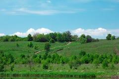 Landschap van groene grasrijke heuvels, vallei, bomen en blauwe hemel Stock Afbeelding