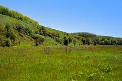 Landschap van groene grasrijke heuvels, vallei, bomen en blauwe hemel Stock Fotografie