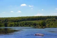 Landschap van groene grasrijke heuvels, vallei, bomen en blauwe hemel Stock Afbeeldingen
