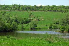 Landschap van groene grasrijke heuvels, vallei, bomen, rivier en hemel Royalty-vrije Stock Foto