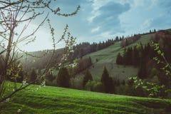 Landschap van grote bergen bij de zonsondergang Royalty-vrije Stock Fotografie