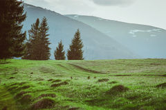 Landschap van grote bergen bij de zonsondergang Stock Fotografie