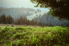 Landschap van grote bergen bij de zonsondergang Royalty-vrije Stock Afbeelding