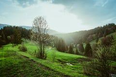Landschap van grote bergen bij de zonsondergang Royalty-vrije Stock Foto's