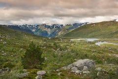 Landschap van Hardangervidda dichtbij Odda royalty-vrije stock fotografie
