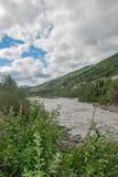 Landschap van het Denali het Nationale Park royalty-vrije stock afbeeldingen