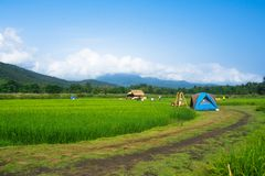 Landschap van het gebied stock foto