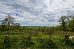 Landschap van het gebied rond Lang Pijnboomreservoir in Michaux Stat royalty-vrije stock afbeeldingen
