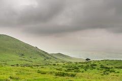 Landschap van het Grote Eiland Hawaï met mist op de achtergrond Stock Foto's