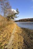 Landschap van het meer Stock Foto's