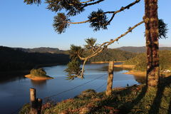Landschap van het meer stock fotografie