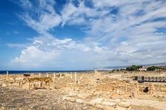 Landschap van het Paphos het archeologische park Stock Afbeeldingen