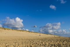 Landschap van het strand van oceaanatlantische oceaan Stock Foto