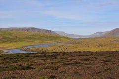 Landschap van IJsland Stock Foto