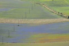Landschap van Italië Stock Afbeelding