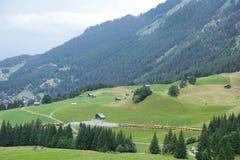 Landschap van Jungfraujoch-Alpen Royalty-vrije Stock Afbeelding